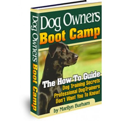 Accelerated Dog Training Health Grooming