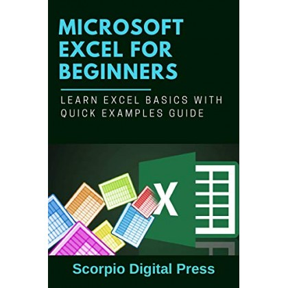Microsoft EXCEL For Beginners Learn Excel Basics with Quick Examples Guide