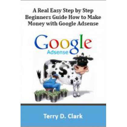 A Real Easy Step by Step Beginners Guide How to Make Money with Google Adsense