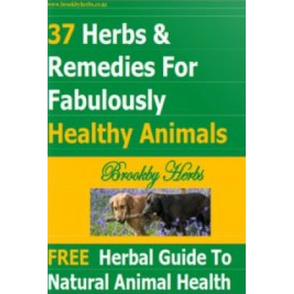 37 Herbs & Remedies for Fabulously Healthy Animals